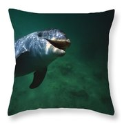 Underwater Close-up Of Smiling Throw Pillow