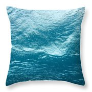 Underwater Image Throw Pillow
