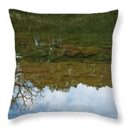 Underwater Landscape Throw Pillow by Lisa Holmgreen