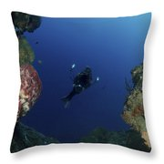 Underwater Photographer At The Entrance Throw Pillow