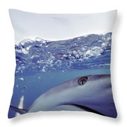 Underwater View Of Gray Reef Shark Throw Pillow