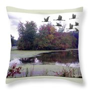 Unicorn Lake - Geese Throw Pillow