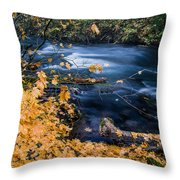 Union Creek In Autumn Throw Pillow