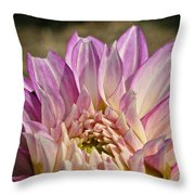 Unnamed Dahlia 3002 Throw Pillow