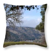 Unnamed  Trail Throw Pillow