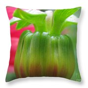 Unreal Photography Throw Pillow