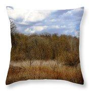 Unspoiled Prairie Landscape Throw Pillow