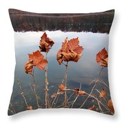 Untitled 102 Throw Pillow