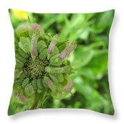 Unusual Bud Throw Pillow