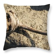 Unusual Driftwood Throw Pillow