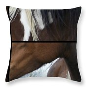 Up Close  In Color Throw Pillow