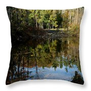 Up Down Beauty All Around Throw Pillow