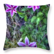 Up The Fence Throw Pillow