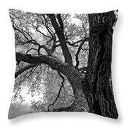 Up Tree Throw Pillow