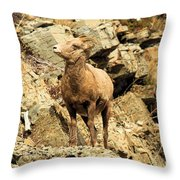 Up Where? Throw Pillow