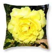 Upbeat Yellow Rose Throw Pillow