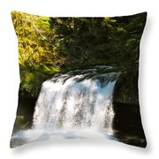 Upper Butte Creek Falls 3 Throw Pillow