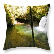 Upper Butte Creek Falls And Plunge Pool Throw Pillow