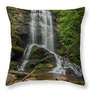 Upper Catawba Throw Pillow
