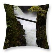 Upper Qualicum Falls 2 Throw Pillow