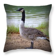 Upright Stance Throw Pillow