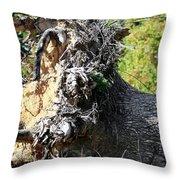Uprooted By The Storm Throw Pillow