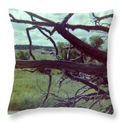 Uprooted Throw Pillow
