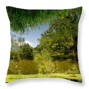 Upside Down And Backwards Throw Pillow
