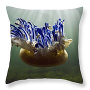 Upside-down Jellyfish Cassiopea Sp Throw Pillow