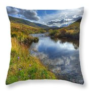 Upstream To The Bridge Throw Pillow by John Kelly