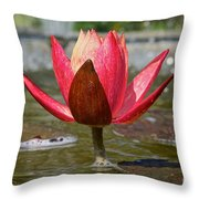 Upward Momentum Throw Pillow