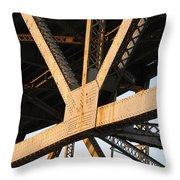 Urban Web Throw Pillow