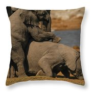 Us Together Throw Pillow
