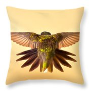 Usaf Hummingbirds Wings Throw Pillow