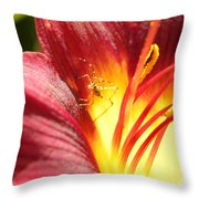 Usual Visitor Throw Pillow