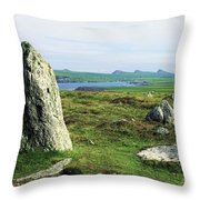 Vale Of Clara Nature Reserve, Co Throw Pillow