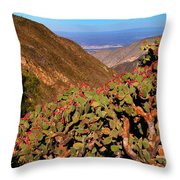 Valle Del Desierto Throw Pillow