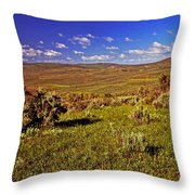 Valley At Fossil Butte Nm Throw Pillow