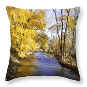 Valley Forge Creek In Autumn Throw Pillow