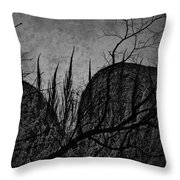 Valley Of Sticks Throw Pillow
