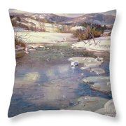 Valley Stream In Winter Throw Pillow