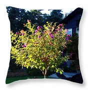 Vancouver In October Throw Pillow