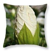 Vanilla Hibiscus Throw Pillow
