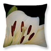 Vanilla Lily Throw Pillow