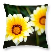 Vanilla Story Throw Pillow