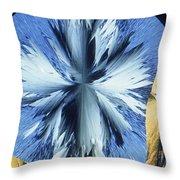 Vanillin Crystals Throw Pillow