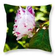 Vari Rose Throw Pillow