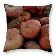 Varied Pumpkins Throw Pillow