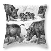 Varieties Of Swine Throw Pillow