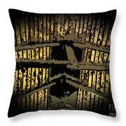 Vaulted Beams Throw Pillow